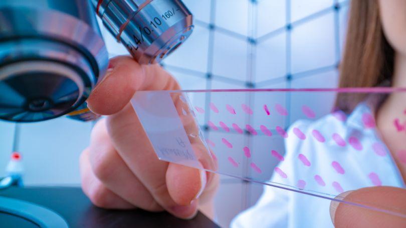 Shattuck Labs Biotech Companies Austin Texas